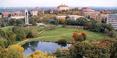 University of Kansas msn programs online