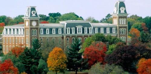 University of Arkansas msn programs online