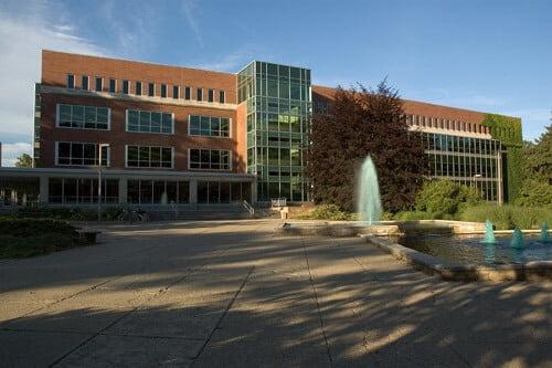 Michigan State University Best online RN programs