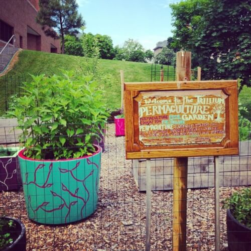 cornell online permaculture