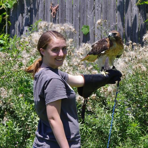 IU Bloomington BS animal behavior