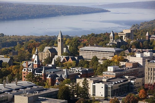 Cornell University bachelor of environmental design
