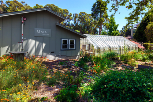 Mills College Sustainability