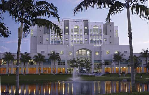Florida International University Business Degree Online
