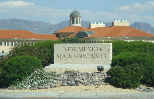 New Mexico State University bachelor's degree in anthropology