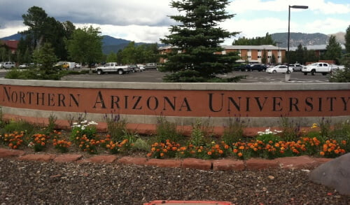 Northern Arizona University Business Degree Online