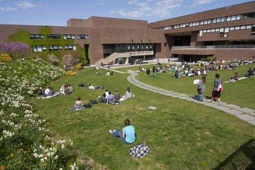 Stony Brook University electronics degrees online