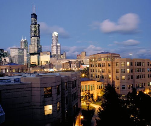 University of Illinois Chicago Online Business Degree
