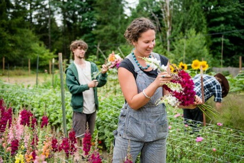 Evergreen State College sustainable agriculture degrees