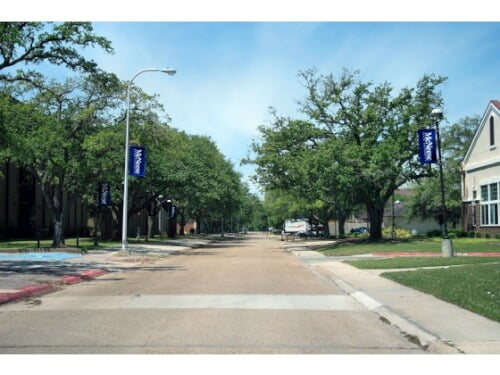 McNeese State College Best Online Sociology Degree