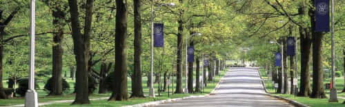 Saint Mary of the Woods College Best English Degree Online