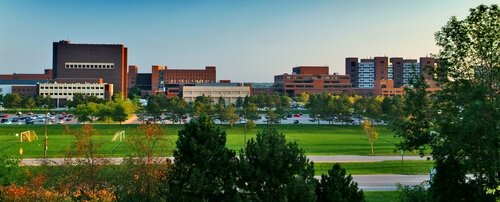University of Buffalo Best RN programs online