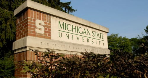 Michigan State University online nursing master's program