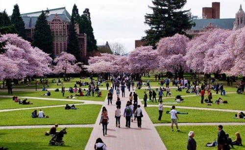 University of Washington computer science degrees for international students