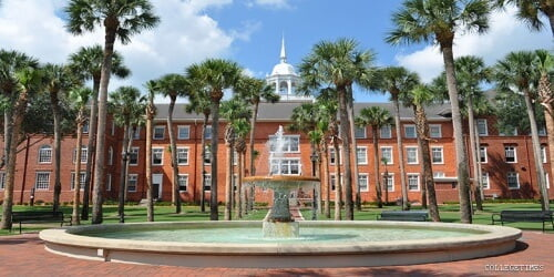 Stetson University master's in accounting online