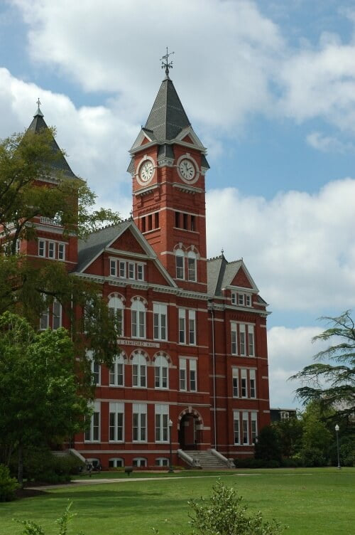 Auburn University ms finance online