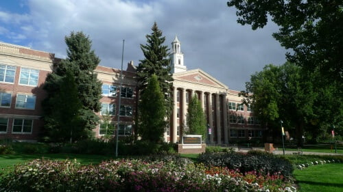 Colorado State University master's in criminal justice online