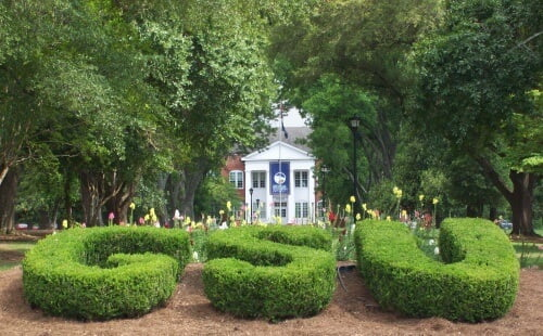 Georgia Southern University master's in economics online