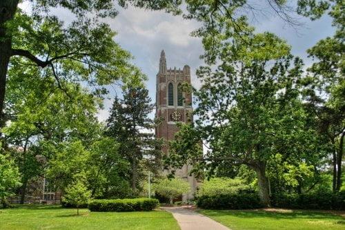 Michigan State University master's human resources online