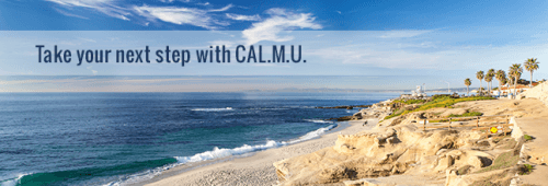 California Miramar University Online Master's in Marketing