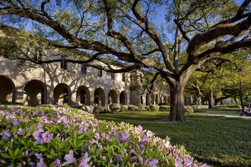 Louisiana State University - MBA Online Top 50 Values