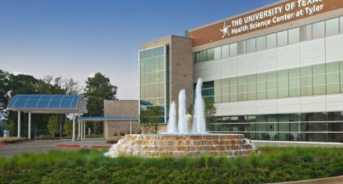 University of Texas at Tyler msn programs online