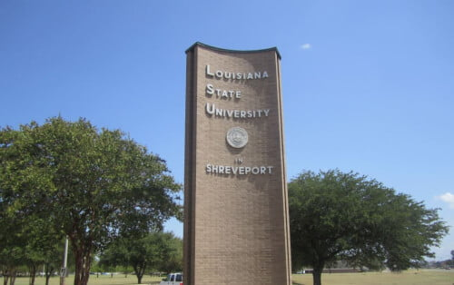 Louisiana State University Shreveport >> Louisiana State University Shreveport College Values Online