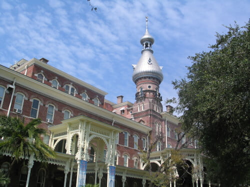 University of Tampa marine biology degree