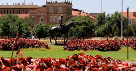 Texas Tech University online PhD education