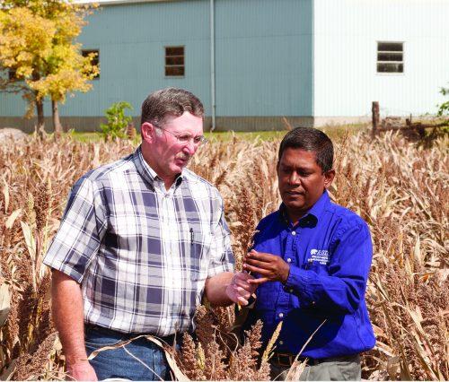 kus minor international agriculture