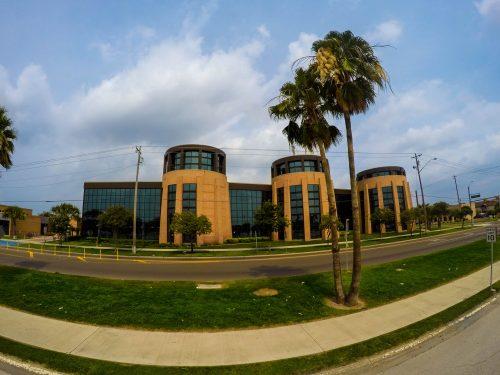 University of Texas Rio Grande Valley fast online degrees