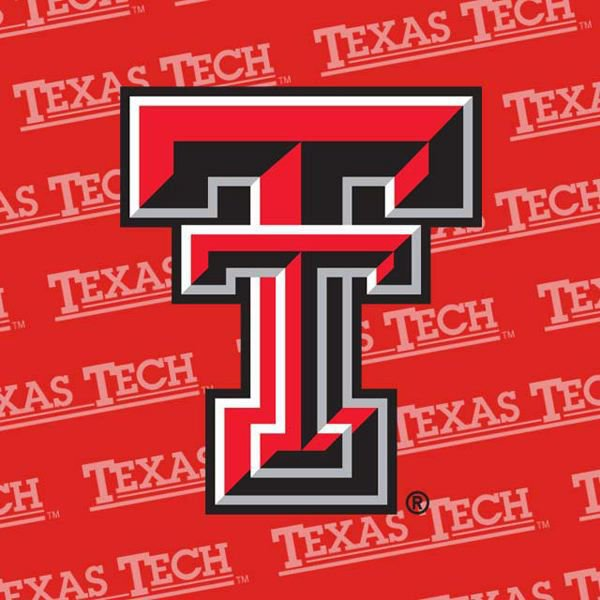 Texas Tech University - MSN in Nursing Informatics Online- Top 30 Values 2019