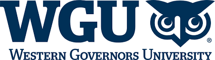 Western Governors University - MSN in Nursing Informatics Online- Top 30 Values 2019