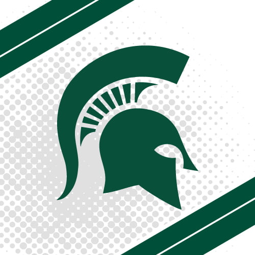 Michigan State University - Master's in Educational Technology Online- Top 50 Values