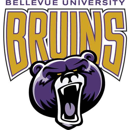 Bellevue University - Top 20 Online PhD Human Resources Management 2019