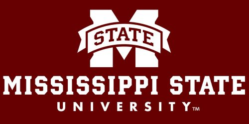 Mississippi State's Online PhD in Computer Science 2019