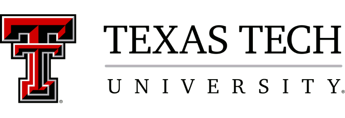 Texas Tech University - Top 20 Online PhD Engineering Management 2019