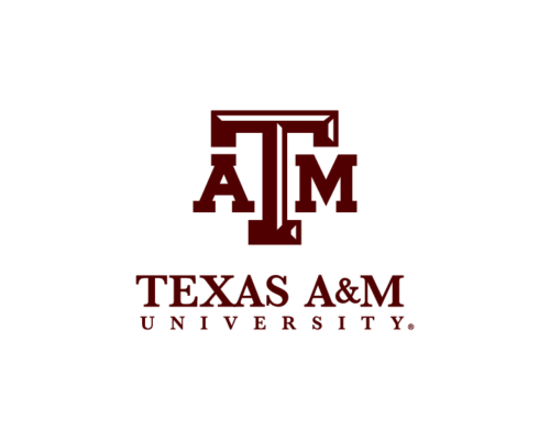 Texas A&M Doctor of Education in Curriculum and Instruction