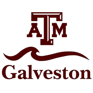 Texas A&M, Galveston - Best Colleges for Sailing