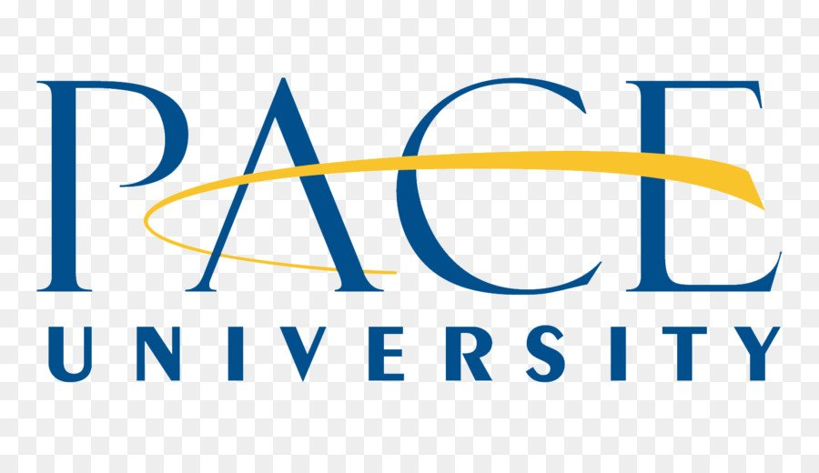 Pace University - 20 Online PhD in Project Management
